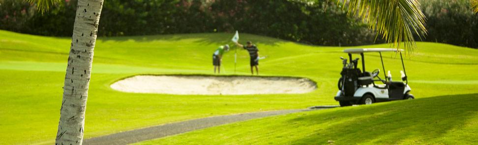 golfcart_batteries