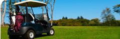 golfcart_battery